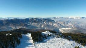 森林横向雪冬天 鸟瞰图飞过 庄严雪山 旅游业手段自然 股票录像