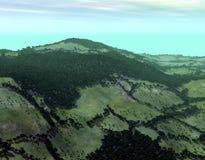 森林横向 免版税库存图片