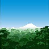 森林横向 库存例证
