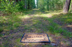 森林欢迎我们 免版税库存图片