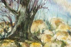 森林水彩横向    免版税库存照片