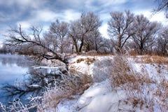 森林河冬天 免版税库存照片
