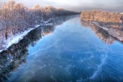 森林河冬天 库存照片