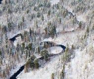 森林河在冬天,顶视图 库存照片