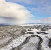 森林河在冬天,顶视图 库存图片