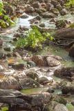 森林河瀑布石头 免版税库存图片