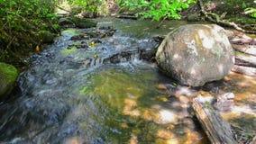 森林河的水 股票视频