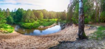 森林河美好的风景有云彩和树的反射的 库存照片