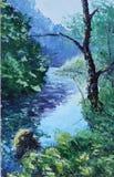 森林河,夏天 图库摄影