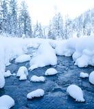 森林流在冬天 图库摄影