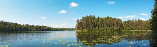 森林湖全景 图库摄影