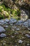 森林湖在前景被奉献按日晒黑,很多石头 免版税库存图片