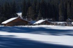 森林湖平安的场面冬天木头 小村庄沿着一条林木线在一个晴朗的冬日 斯诺伊童话在保加利亚 免版税图库摄影