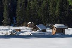 森林湖平安的场面冬天木头 小村庄沿着一条林木线在一个晴朗的冬日 斯诺伊童话在保加利亚 库存图片