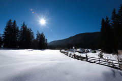 森林湖平安的场面冬天木头 小村庄沿着一条林木线在一个晴朗的冬日 斯诺伊童话在保加利亚 免版税库存图片