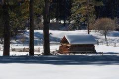 森林湖平安的场面冬天木头 小村庄沿着一条林木线在一个晴朗的冬日 斯诺伊童话在保加利亚 免版税库存照片