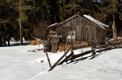 森林湖平安的场面冬天木头 小村庄沿着一条林木线在一个晴朗的冬日 斯诺伊童话在保加利亚 库存照片