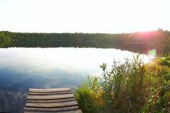 森林湖的岸 免版税库存图片