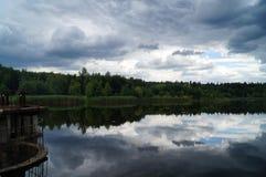 森林湖的看法 免版税图库摄影