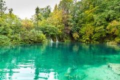 森林湖看法用与visibl的透明绿松石水 图库摄影