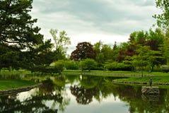 森林湖草坪镜子 免版税库存图片