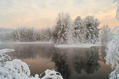 森林湖被解冻的冬天 库存图片