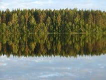 森林湖 免版税图库摄影
