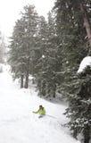 森林滑雪 免版税图库摄影