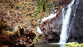 森林瀑布在冬天 影视素材