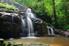 森林瀑布 库存图片