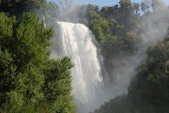森林瀑布 库存照片