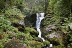 黑森林瀑布 库存照片