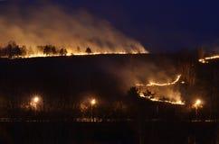 森林火灾在城市 库存图片