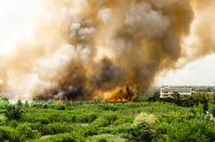 森林火灾在热的供应过多的城市 消防队员被帮助急切预防火灾被涂对村庄 免版税库存图片
