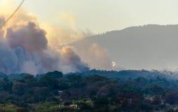 森林火灾在彻尔 del树丛,库埃纳瓦卡,莫雷洛斯州,墨西哥 免版税库存照片