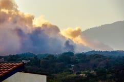 森林火灾在彻尔 del树丛,库埃纳瓦卡,莫雷洛斯州,墨西哥 免版税图库摄影