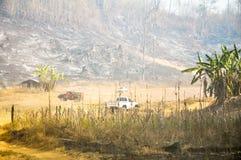 森林火灾惊动 库存照片
