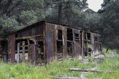 森林火灾损坏的森林棚子 库存照片