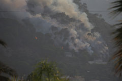 森林火灾撒丁岛 图库摄影