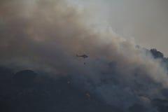 森林火灾撒丁岛 库存图片