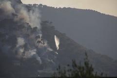 森林火灾撒丁岛 免版税库存照片