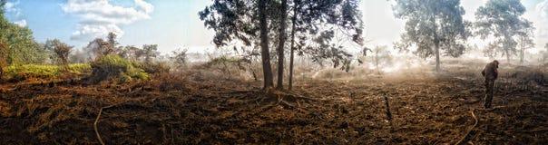 森林火灾旅团 免版税图库摄影