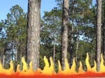 森林火灾标志 库存照片