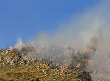 森林火灾的发展与火焰的 库存照片