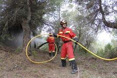 森林火灾的消防队员 免版税库存照片