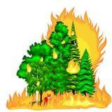 森林火灾,在森林风景损伤,自然生态灾害,热的灼烧的树,危险森林火灾火焰的火与 皇族释放例证