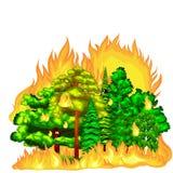 森林火灾,在森林风景损伤,自然生态灾害,热的灼烧的树,危险森林火灾火焰的火与 库存例证