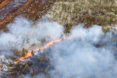 森林火灾,顶视图 免版税图库摄影
