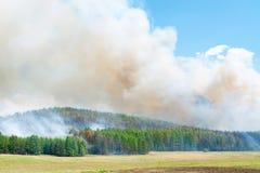 森林火灾 图库摄影