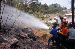 森林火灾 库存照片